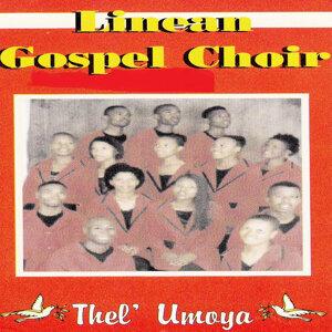 Linean Gospel Choir 歌手頭像
