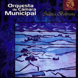 Orquesta De Cámara Municipal 歌手頭像