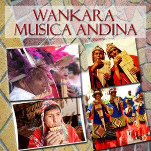 Wankara 歌手頭像