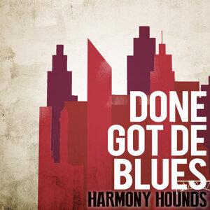 Harmony Hounds 歌手頭像