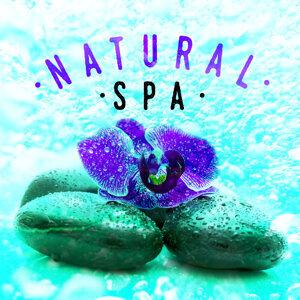 Nature Spa Meditation Music|Sonidos de la naturaleza Relajacion 歌手頭像