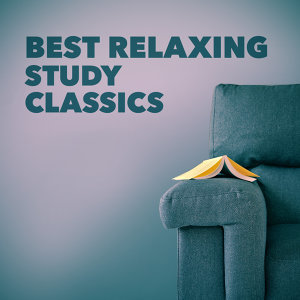 Calm Music for Studying Relaxation Study Music Study Music 歌手頭像