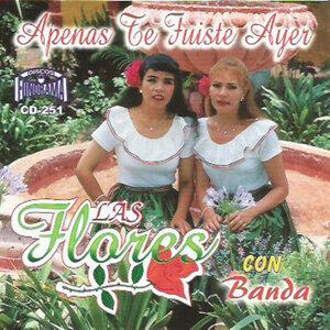 Las Flores con Banda 歌手頭像