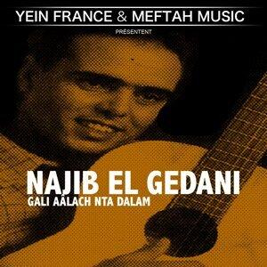 Najib El Gedani 歌手頭像