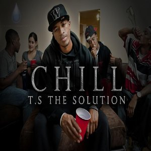 T.S the Solution 歌手頭像