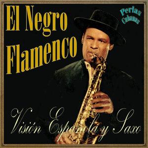 El Negro Flamenco 歌手頭像