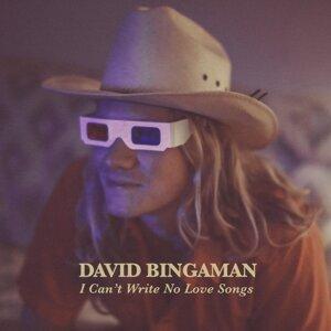 David Bingaman 歌手頭像