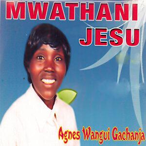 Agnes Wangui Gachanja 歌手頭像