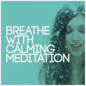 Chinese Relaxation and Meditation, Breathe, Calming Music 歌手頭像