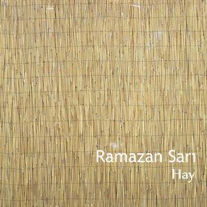 Ramazan Sarı 歌手頭像