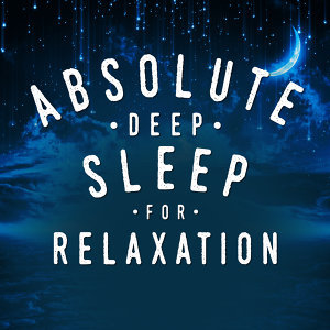 Music For Absolute Sleep, Deep Sleep Relaxation, Deep Sleep Systems 歌手頭像