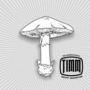 The International Mighty Mushroom 歌手頭像