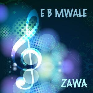 E B Mwale 歌手頭像