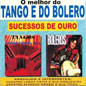 Maestro Alfredo Grossi & Sua Típica 歌手頭像
