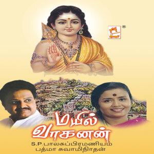 S.P.Balasubramanian,Padma Swaminathan 歌手頭像