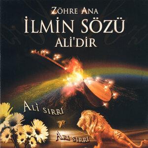 Süheyla Gülen 歌手頭像