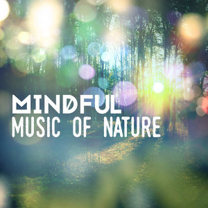 Spa, Relaxation and Dreams|Sounds of Nature White Noise for Mindfulness, Meditation and Relaxation|Spa Music 歌手頭像