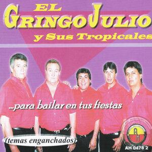 El Gringo Julio 歌手頭像