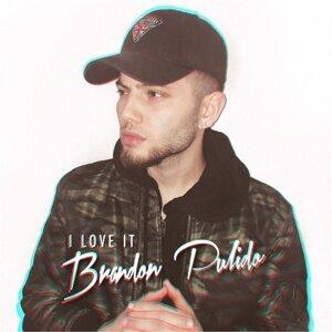Brandon Pulido 歌手頭像