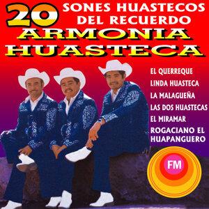 Armonia Huasteca 歌手頭像