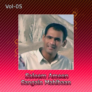 Saleem Ameen 歌手頭像