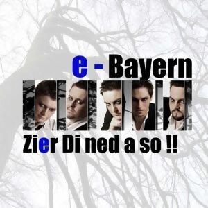 e-Bayern 歌手頭像