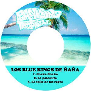 Los Blue Kings de Ñaña 歌手頭像