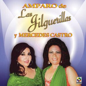 Amparo De Las Jilguerillas Y Mercedes Castro 歌手頭像