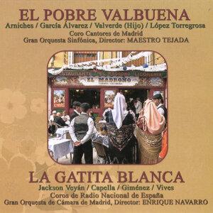 Gran Orquesta Sinfónica|Gran Orquesta de Cámara de Madrid 歌手頭像