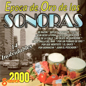 Sonora 2000 歌手頭像