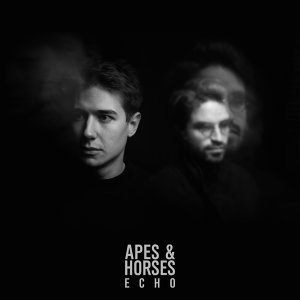 Apes & Horses
