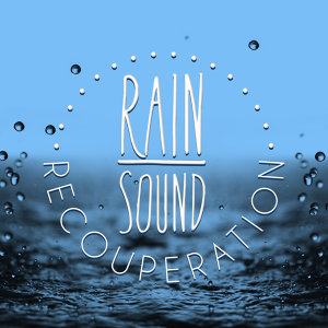 Rain Sounds Nature Collection |Rain Sounds 歌手頭像