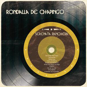 Rondalla de Chapingo 歌手頭像