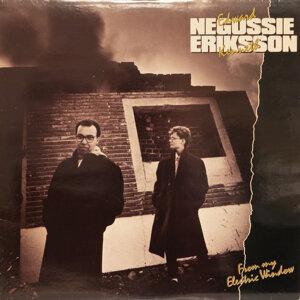 Negussie - Eriksson 歌手頭像