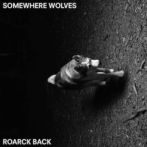 Somewhere Wolves 歌手頭像