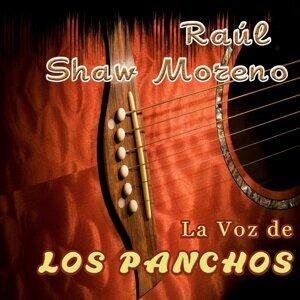 Raul Shaw Moreno アーティスト写真