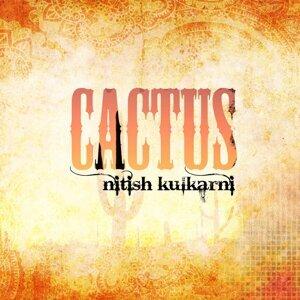 Nitish Kulkarni 歌手頭像