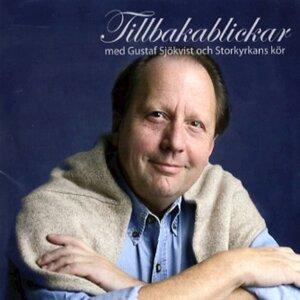 Gustaf Sjökvist 歌手頭像