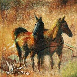Wild Wisteria Band 歌手頭像