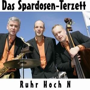 Spardosen - Terzett 歌手頭像