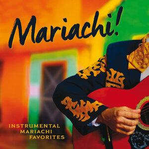 The Mariachi Boys 歌手頭像
