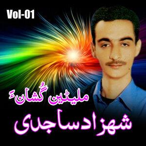 Shahzad Sajidi 歌手頭像