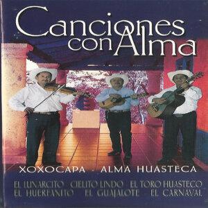 Xoxocapa, Alma Huasteca 歌手頭像