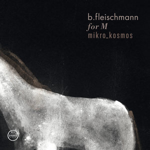 B. Fleischmann 歌手頭像