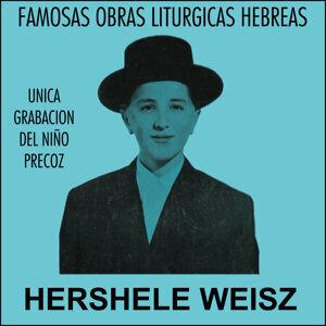 Hershele Weisz 歌手頭像