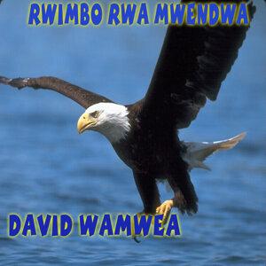 David Wamwea 歌手頭像
