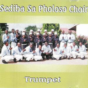 Sediba Sa Pholoso Choir 歌手頭像