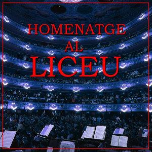 Orquesta Sinfónica del Gran Teatre del Liceu 歌手頭像