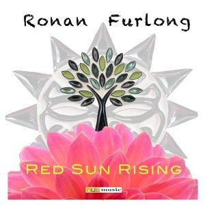 Ronan Furlong 歌手頭像