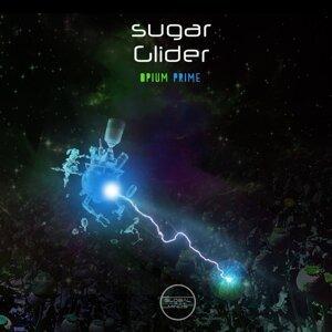 Sugar Glider 歌手頭像